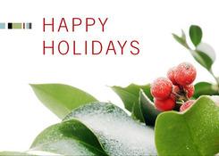 BristDev_HolidayPlant_eGC