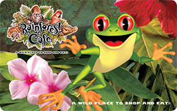 Rainforest_PLASTIC