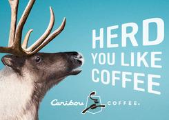Herd You Like Coffee